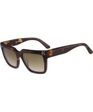 Karl Lagerfeld Kl869s havana güneş gözlüğü